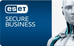 eset-secure-business-license-key-discount-price
